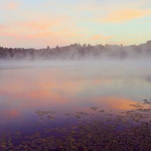 williams lake mist